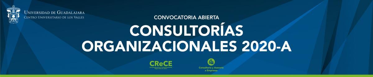 Convocatoria Consultorías Organizacionales 2020 A