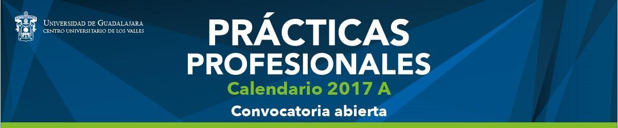 Banner convocatoria prácticas profesionales