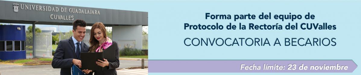 Convocatoria Protocolo 19A