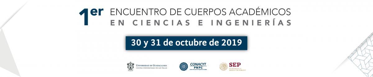 1er Encuentro de Cuerpos Académicos 2019