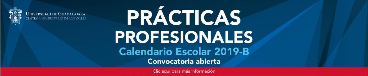 Convocatoria Prácticas Profesionales 2019-B