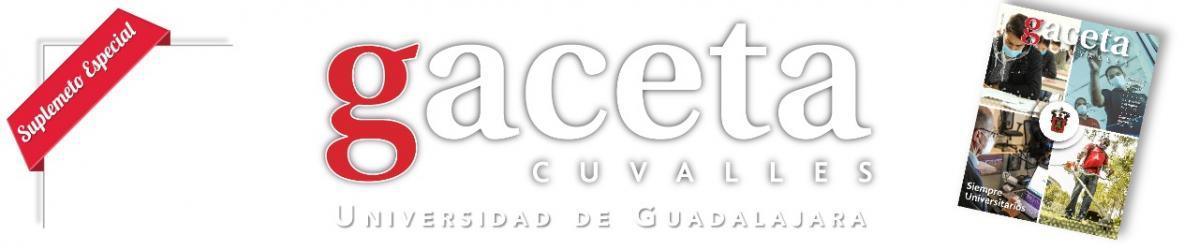 Gaceta - Edición Informe 2020 -